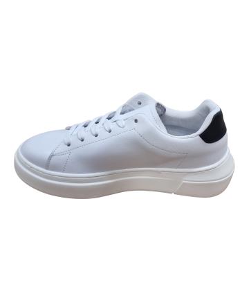 Copertina prima nascita- gatto- Cardinale